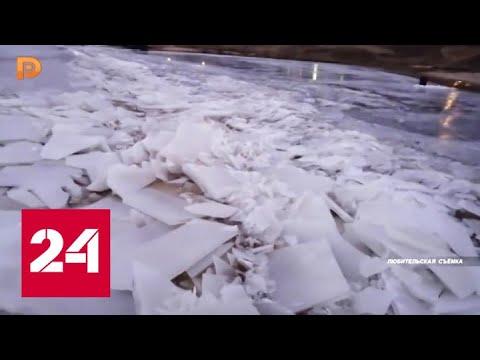 Из-за аномального тепла в Самарской области вскрылась Волга - Россия 24