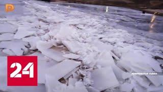 Смотреть видео Из-за аномального тепла в Самарской области вскрылась Волга - Россия 24 онлайн