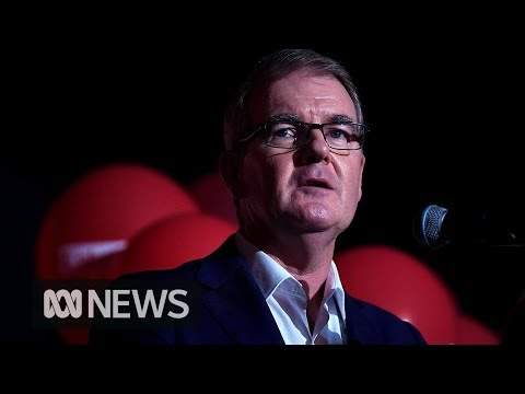 """NSW election result """"disappointing"""" says Labor leader Michael Daley 
