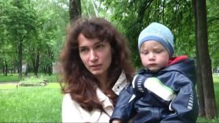 видео У центрі Луцька під час зливи впало дерево. ФОТО