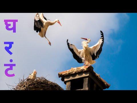 शब्द || कविता || घरट  Shabd || Kavita || Gharat