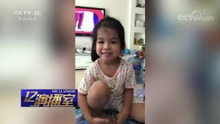 《热线12》 20190630 人间九月天| CCTV社会与法