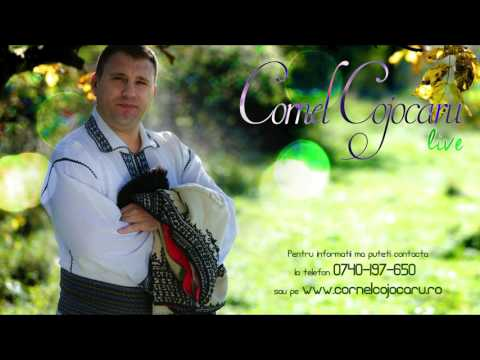 Cornel Cojocaru - Nu vreau nici o multumire NEW - 31.01.2017