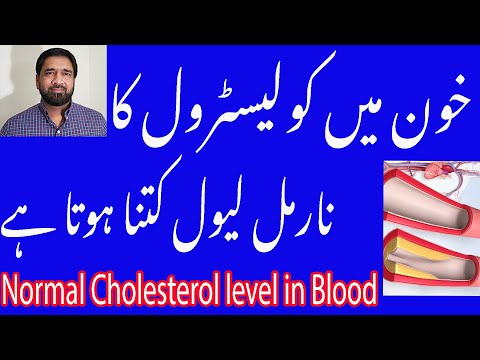 khoon-mein-cholesterol-ki-miqdar-kitani-honi-chaheye-/what-is-normal-cholesterol-level-in-urdu/hindi