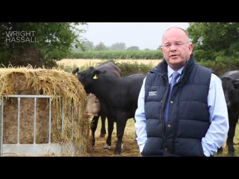 Thinking of your farm as a business - an overview from Paul Rice