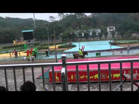 shenzhen private guide video Shenzhen Safari Park & Shenzhen window of the world