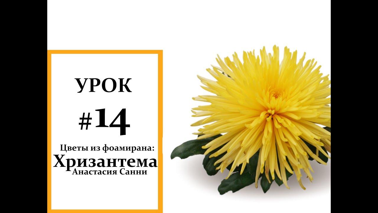 Раздел содержит информацию о российских и зарубежных компаниях производителях и продавцах, предлагающих оптом и/или в розницу искусственные цветы и растения. Современные искусственные растения представляют собой искусно выполненные ботанические копии промышленного или.