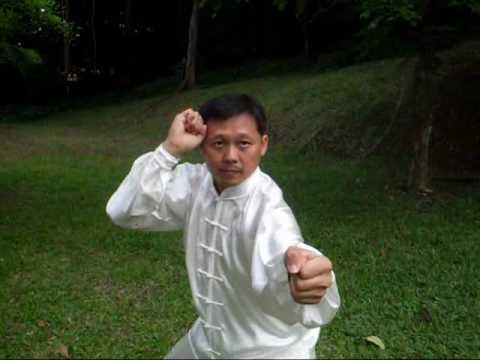Download Xingyi Kempo Demo 1 by Master Tay