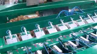 Дозатор для овощей: картофель, лук, свекла, морковь(Комбинационный весовой дозатор СП12-1К (мультиголовка) предназначен для автоматического дозирования овощей..., 2012-11-06T09:40:45.000Z)