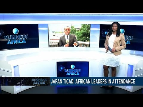 TICAD 7: Japan reviews its cooperation with Africa [Business africa]