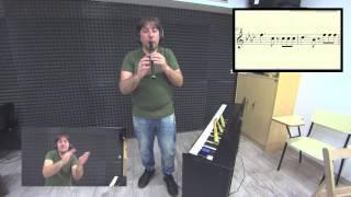 La Mordidita Ricky Martin ft Yotuel Pito Pastoril Galego Cover Flauta Patitura Notas Tutorial Gratis