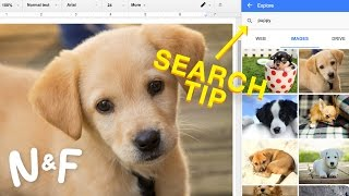 5 Google Search Tips You Should Know About
