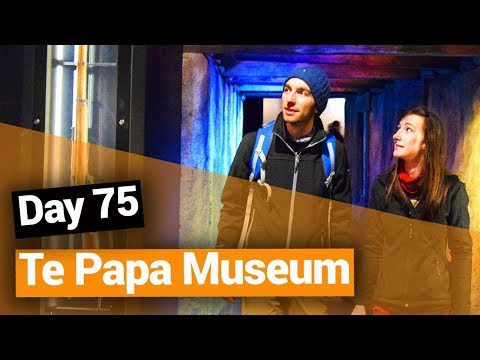 Te Papa Museum in Wellington - New Zealand's Biggest Gap Year – Backpacker Guide New Zealand