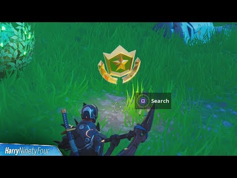 Search Between Giant Rock Man, Crowned Tomato & Encircled Tree Location - Fortnite (Season 7)