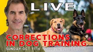Corrections in Dog Training