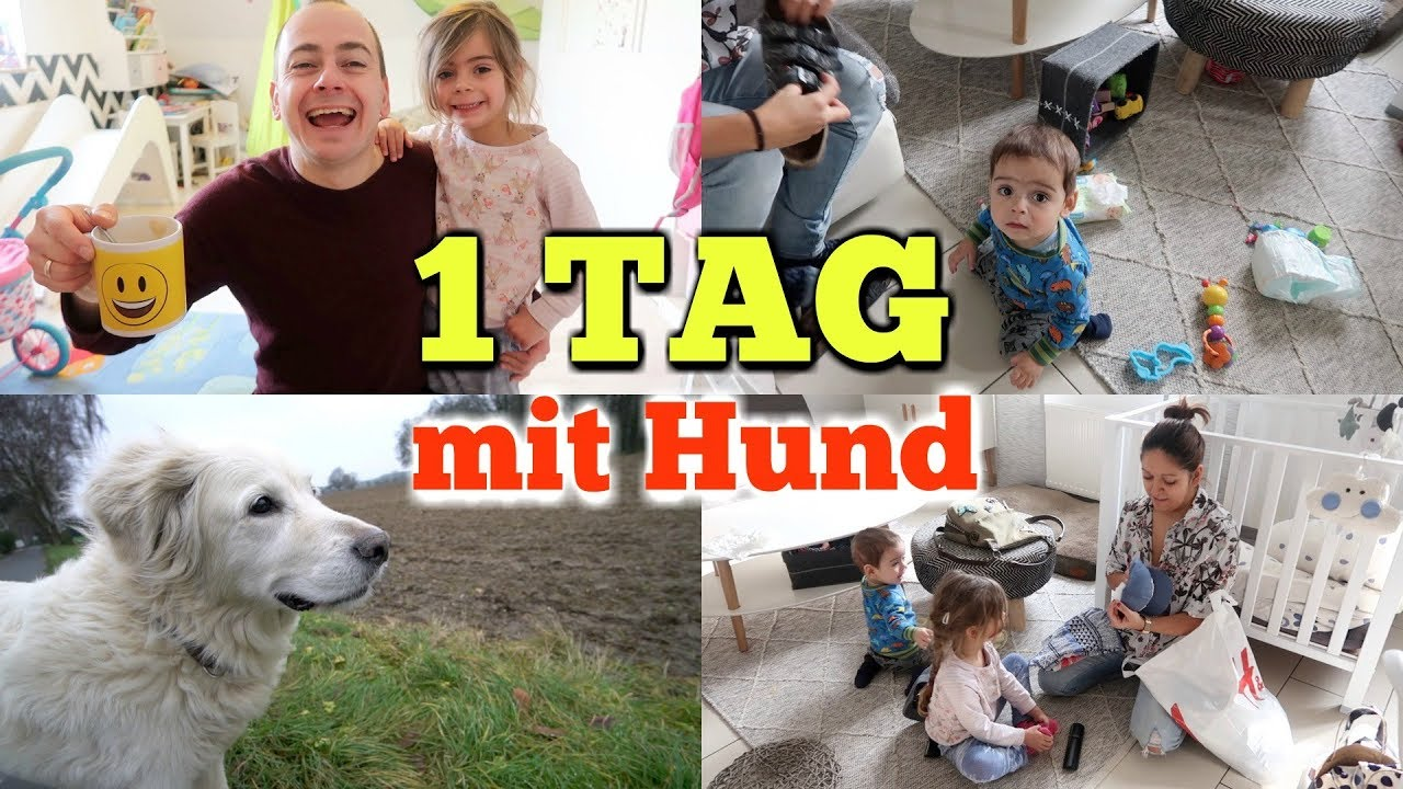 ein tag mit hund und domi gassi gehen familien alltag vlog 939 rosislife youtube. Black Bedroom Furniture Sets. Home Design Ideas