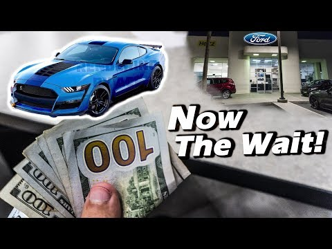 Ordering A 2019 Shelby GT500