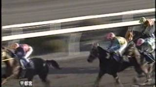 2003年1月6日 宇都宮2日目10R サラ系B2 1500m.