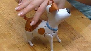 """""""Sekretne życie zwierzaków domowych"""" Pies Max z bajki"""
