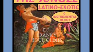 THE JUNGLE LATINO EXOTIC - ( Instrumental - 6 Medley )