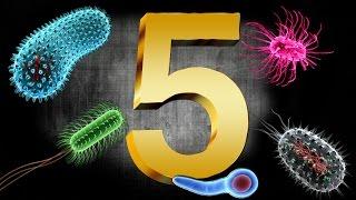 5 BACTERIAS SENSACIONALES
