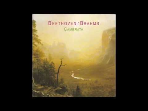Beethoven Trio for Clarinet, Cello, and Piano Op. 38
