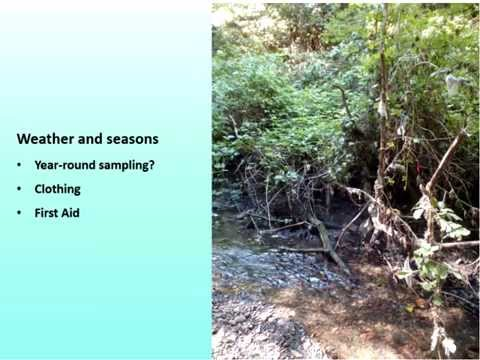 Outdoor Classroom: Water Quality Monitoring in Outdoor Education