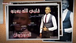 جديد محمد الفحيل قلبي الله يعينو اغاني سودانية 2018