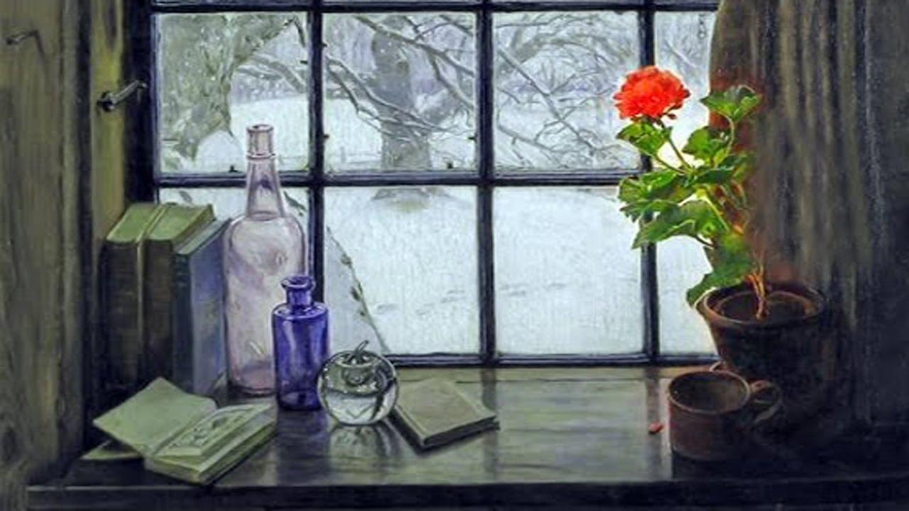 Цветок у окна никольский