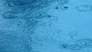 6시간 빗소리(6HOURS RAIN SOUND))-수면유도, 스트레스 해소, 집중력 향상에 도움이 되는 ASMR    LBC방송국