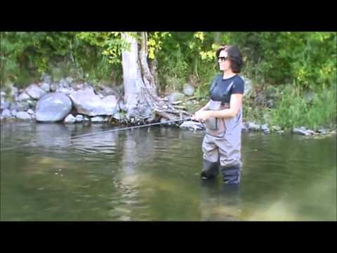 Fall Salmon Run on the Sheboygan River