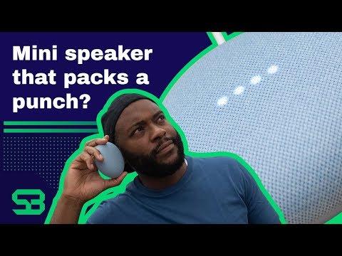 Google Nest Mini Review — Small Price, Big Sound?