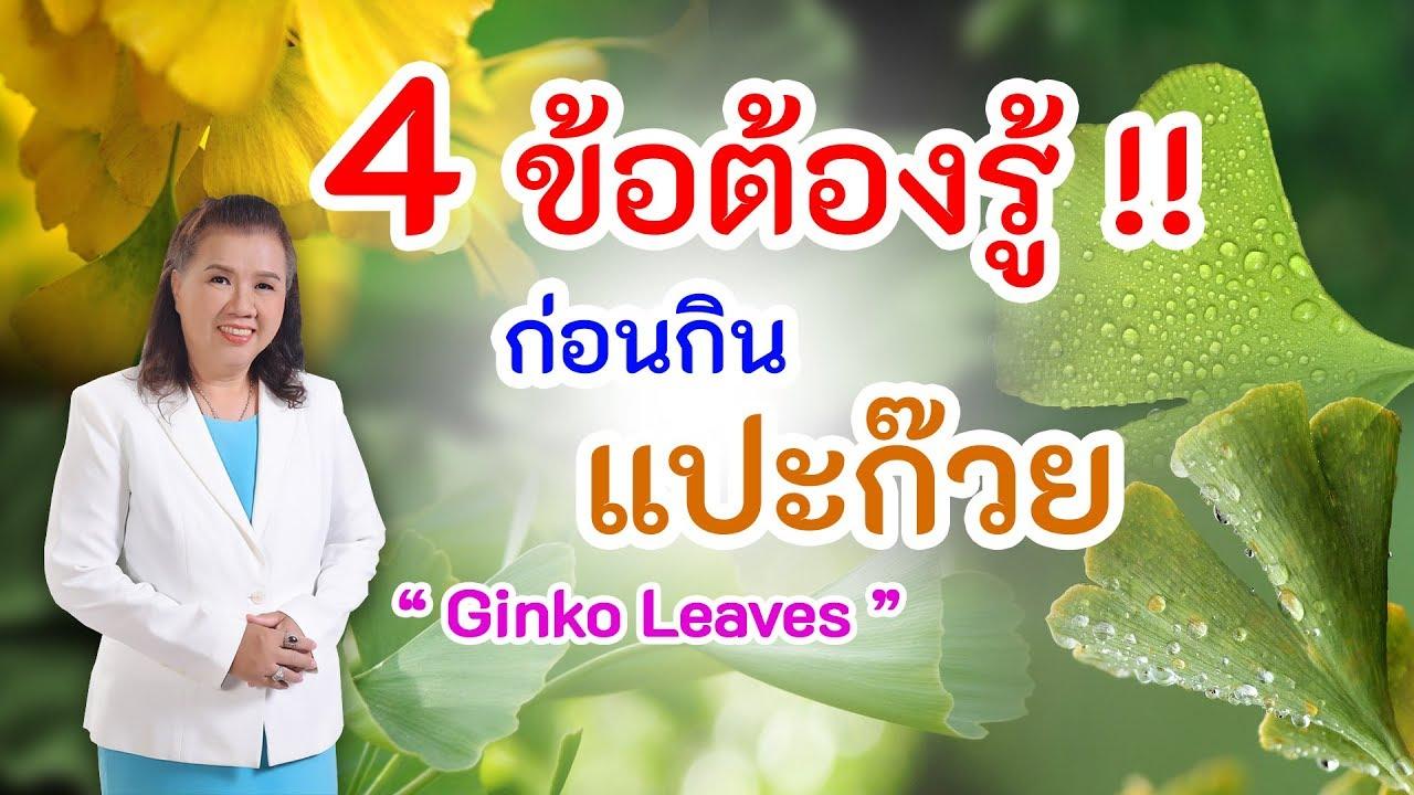 ห้ามพลาด !! 4 ข้อต้องรู้ ก่อนกินแปะก๊วย ดีต่อสุขภาพ | Ginko Leaves | พี่ปลา Healthy Fish