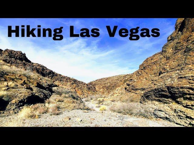 LEAVING LAS VEGAS: Hiking Petroglyph Canyon