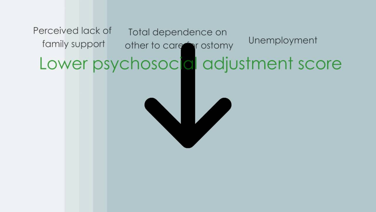 Full text] Psychosocial adjustment among patients with