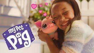 Little Live Pets | My Pet Pig | TVC 15