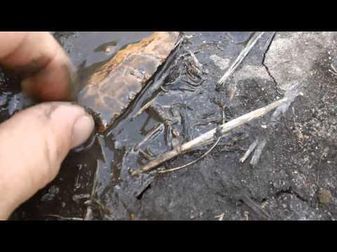 cache site! Mo  arrowhead hunt 5/21/14