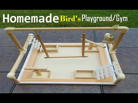 Homemade bird playground/bird Gym|DIY Bird playground|#LoveOurParakeets