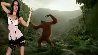 Обезьяна  танцует с девушкой