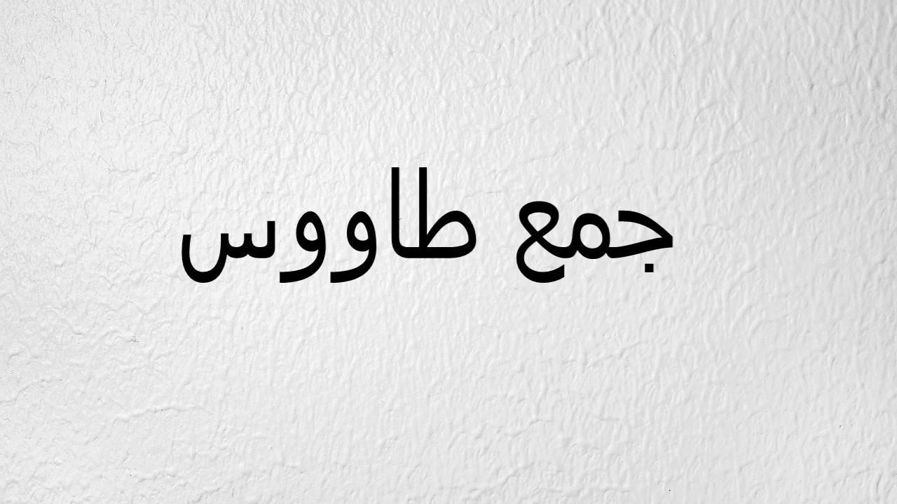 جمع كلمة فأس في اللغة العربية