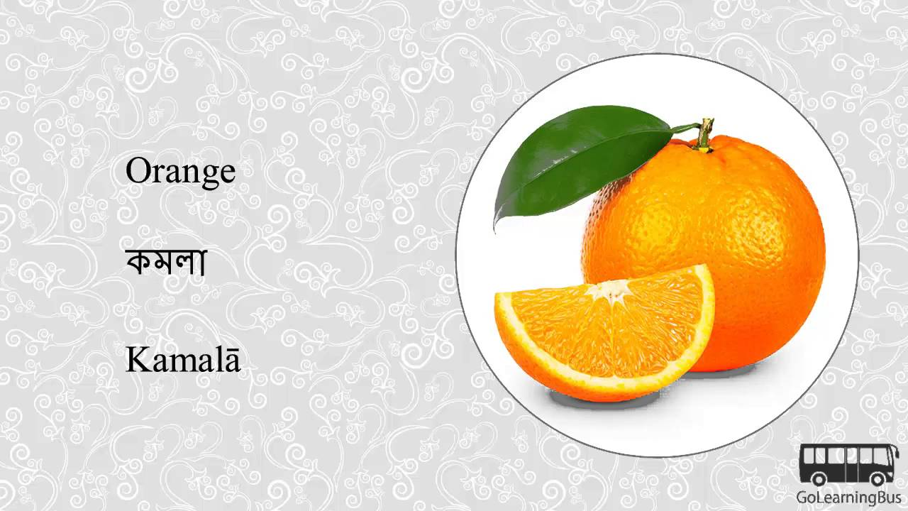 Learn Bengali Visual Dictionary - Fruits and Nuts via Videos by  GoLearningBus(3A)