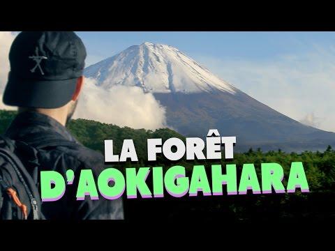 LA FORET D'AOKIGAHARA (SUICIDE FOREST) - (LES ETRANGES EXPERIENCES)