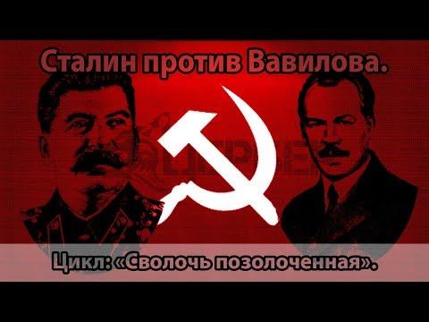 Вопрос: Трофим Лысенко и Николай Вавилов. Так кто был прав?