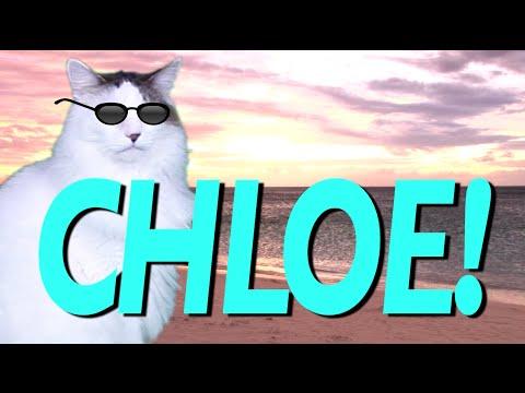 Happy Birthday Chloe Epic Cat Happy Birthday Song Youtube