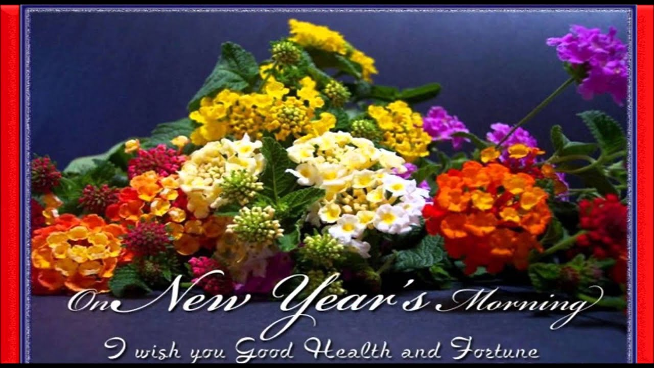 Download free happy new year 2016 whatsapp video latest new year download free happy new year 2016 whatsapp video latest new year greetings sms wishes 4 youtube kristyandbryce Choice Image