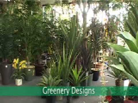 Greenery Designs