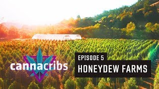 1st California Recreational Cannabis Farm (S1E5: Honeydew Farms, Humboldt)