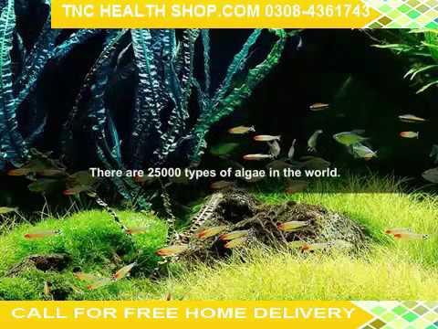 Natural Spirulina Multivitamin supplement