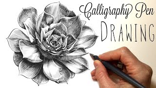 Drawing an Aeonium succulent with a Calligraphy ink pen