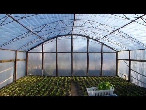 видео: Самодельная теплица 6х12 для помидоров и огурцов